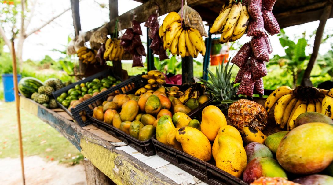 A street vendor in Jamaica selling lots of healthy fruits and vegetables